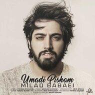 Milad Babaei – Umadi Pisham