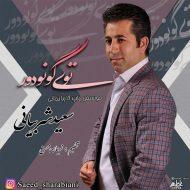 Saeeed Sharabiani – Toy Gounidour