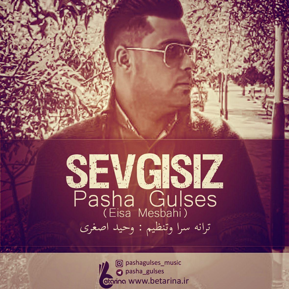 Pasha Gulses - Sevgisiz