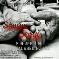 Shahin Zeinalabedinzade – Sonsuz Sevgi