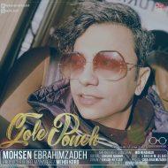 Mohsen Ebrahimzadeh – Gole Poone