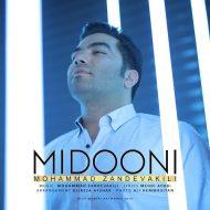 Mohammad Zand Vakili – Midooni