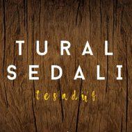 Tural Sedali – Tesaduf