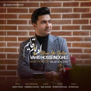 Vahid Hosseinoghli - Olum Ya Qalim