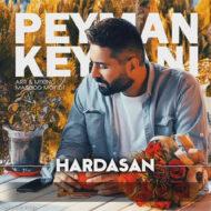 Peyman Keyvani – Hardasani