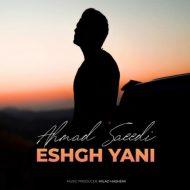 Ahmad Saeedi – Eshgh Yani