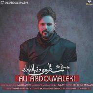 Ali Abdolmaleki – Setareye Donbaledar