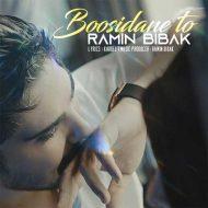 Ramin Bibak – Boosidane To